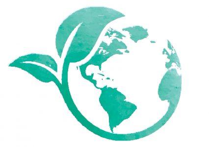 Fig Tree International Ltd Blog